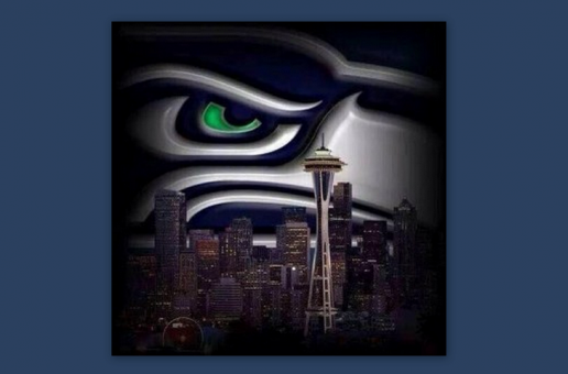NFC CHAMPIONS SEATTLE SEAHAWKS!