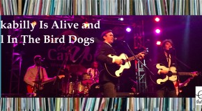 Rockabilly Is Alive and Well In The Bird Dogs